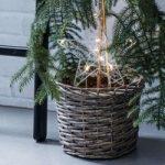 Stjernestikker LED Gardener