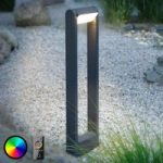 Paul Neuhaus Q-ALBERT LED-vejlampe, antracit